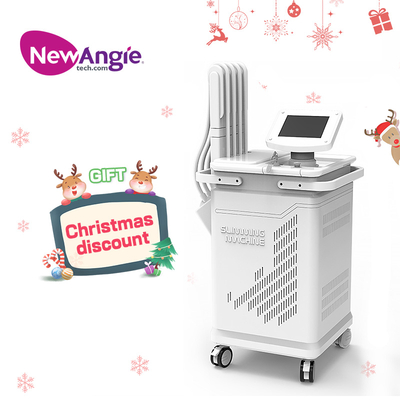 Hot Factory Price Stable Type 1060nm Diode Laser Weight Loss Machine /fat Dissolving Machine